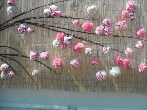 bloom-floral