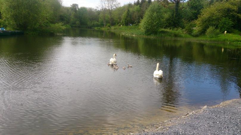 irish-lake